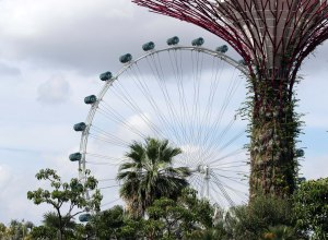 Gardens and Singapore Flyer