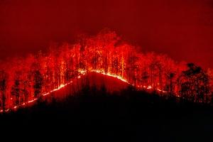 Adam's fire pic
