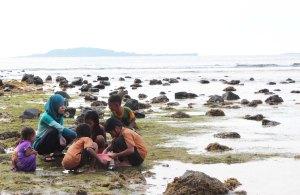 Gathering crabs 2