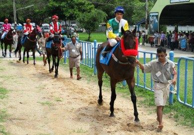 races 5