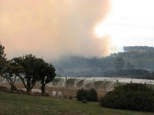 blog-bushfire